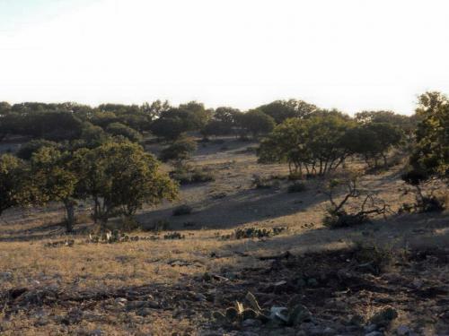 Land Improvement
